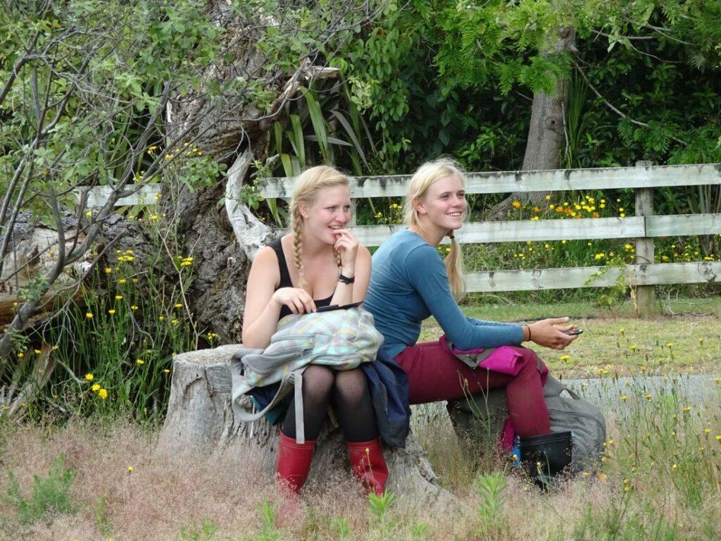 Imke & Selina aprèsune journée de récolte à Kerikeri - Girltrotter