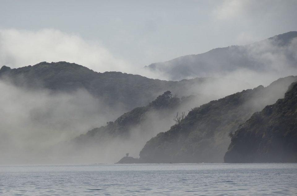 BAY OF ISLANDS : VISITE DE LA BRUMEUSE BAIE DES ÎLES EN NOUVELLE-ZELANDE