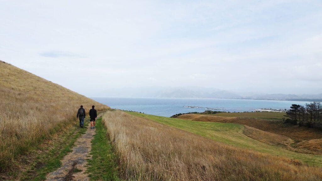 Péninsule de Kaikoura en Nouvelle Zélande - Girltrotter
