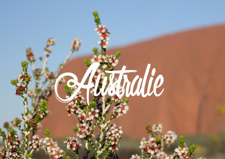 Carnets de voyage et conseils pour voyager en Australie