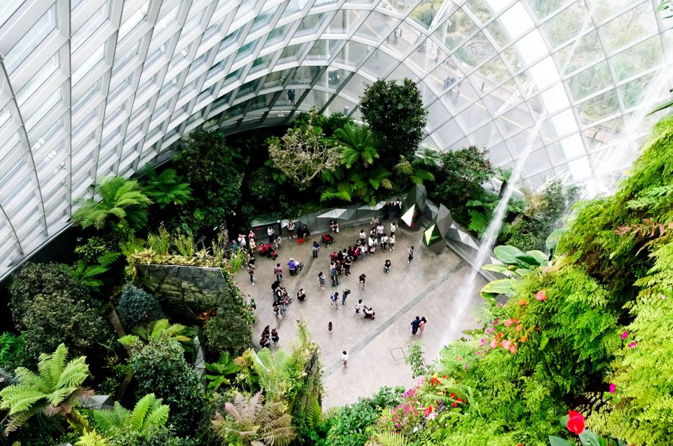 The Clouds Forest au Gardens by the Bay de Singapour - Girltrotter
