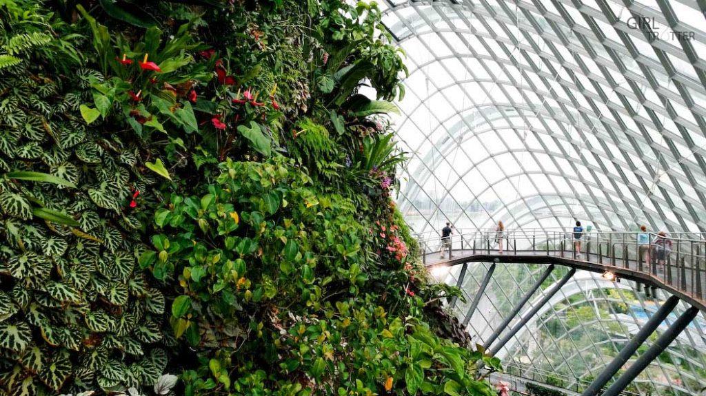 The Clouds Forest, une des serres de Gardens by the Bay à Singapour - Girltrotter-6