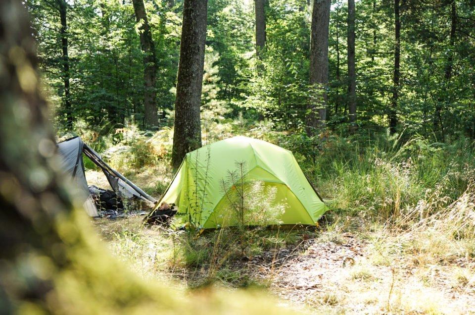 Bivouac en forêt de Fontainebleau, où camper ?