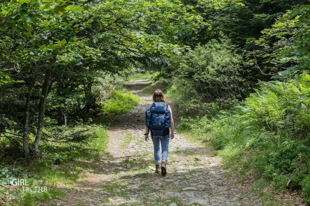 Randonnée au coeur du Parc naturel régional du Pilat en Loire
