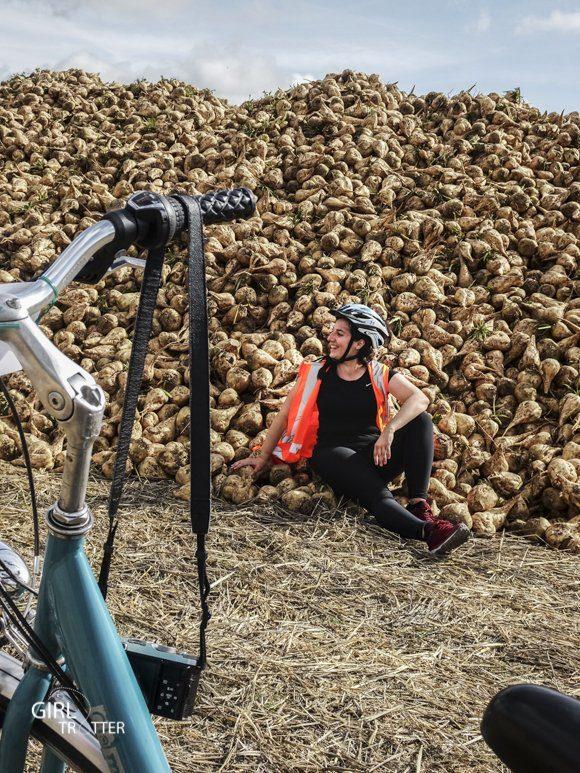 Le Mad Jacques vélo trip - micro aventure