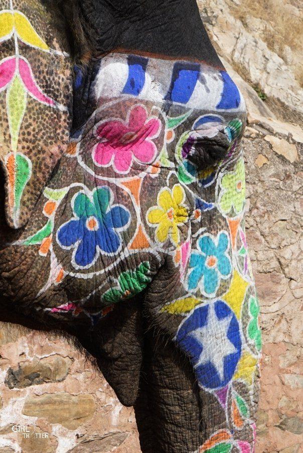 Voyager responsable et local - éléphant utilisé pour le tourisme en Inde