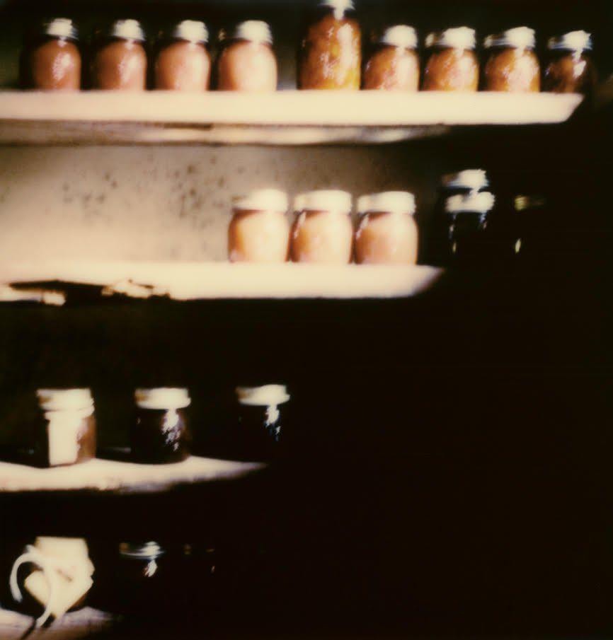 Polaroid Toscane Cyril Manzini1