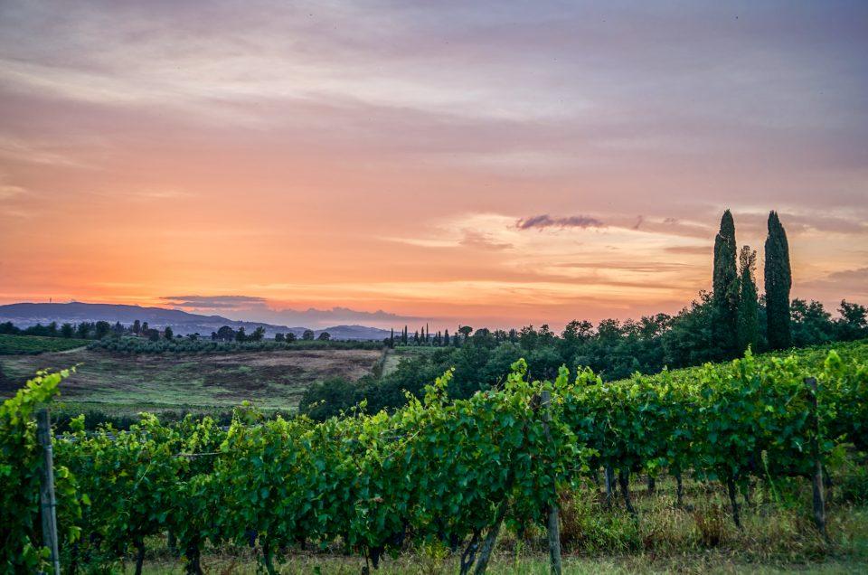 Un été en Toscane : bonnes adresses, sites et activités à découvrir